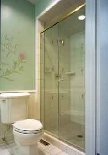 Delightful Shower Doors